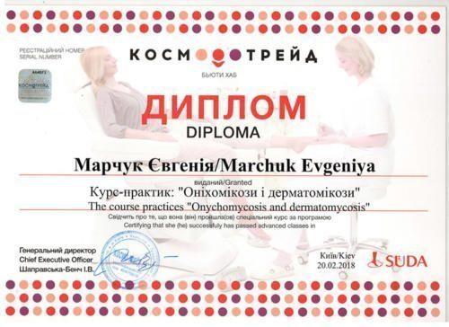 диплом-Марчук